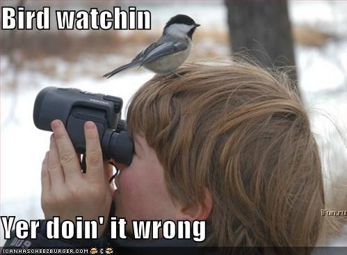 Bird Watchin\', Yer Doin\' It Wrong